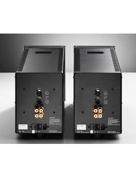 Electrocompaniet AW180M Etapa de Potencia Monofónica (Precio por pareja)