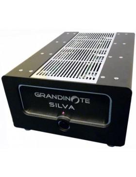 Grandinote Silva Etapa de potencia Estéreo