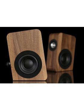 Boenicke Audio W5 (Pareja)