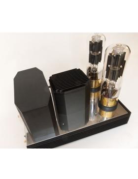 KR Audio Kronzilla DM Etapas de potencia monofónicas (pareja)