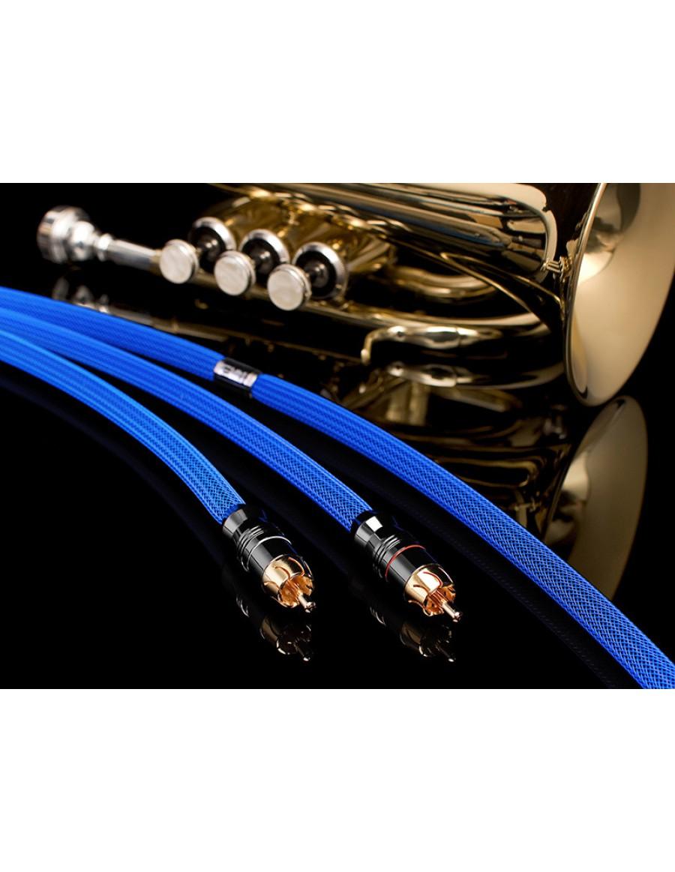 Albedo Blue Interconnect RCA