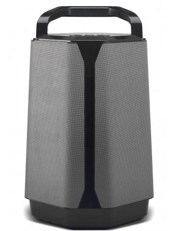 Soundcast VG7