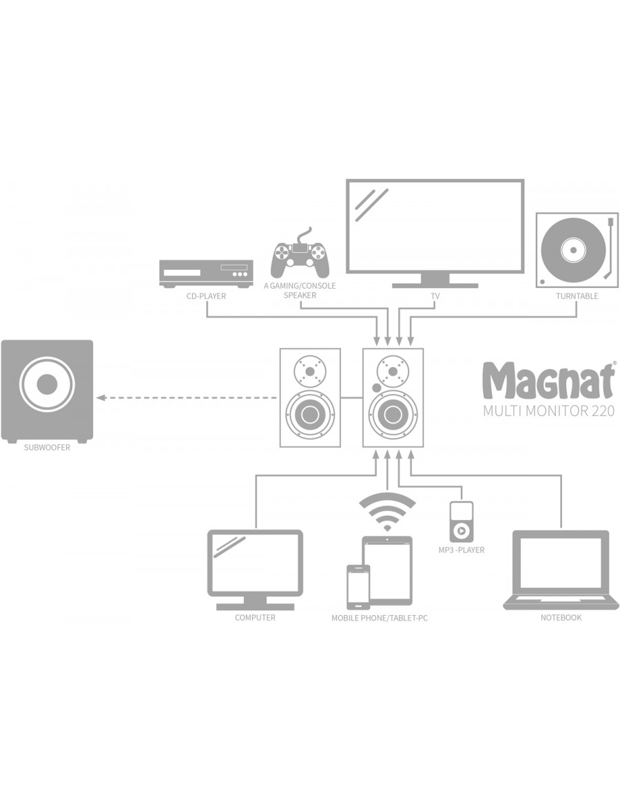 Magnat Multi Monitor 220